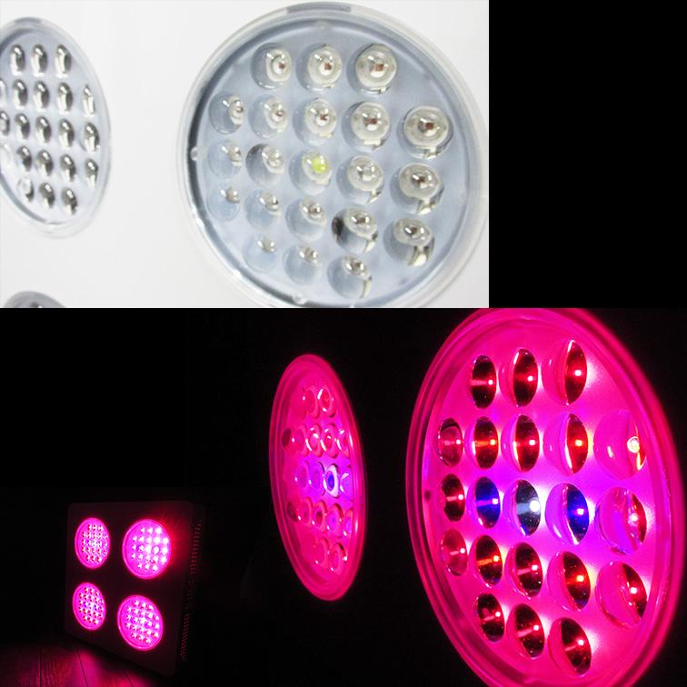 LED植物灯 素子