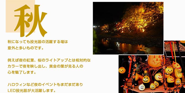 秋 紅葉のライトアップ、ハロウィン