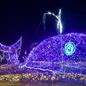 長野県安曇野市安曇野の里光のページェント様へのイルミネーション業務用の施工例
